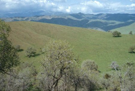 5320: GOV: CA LAND, 2.50 AC. KERN COUNTY, B&A $199/mo