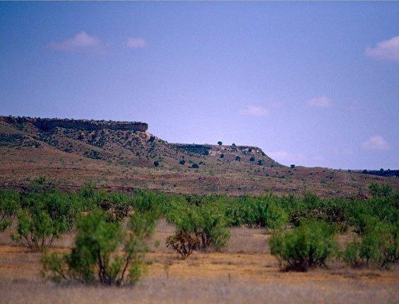 1642: GOV: TX LAND, LA HACIENDA ESTATES, STR SALE