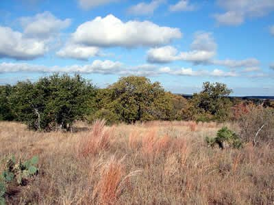 2716: GOV: TX LAND, DELL VALLEY, OFF HWY 62-SCENIC-CITY