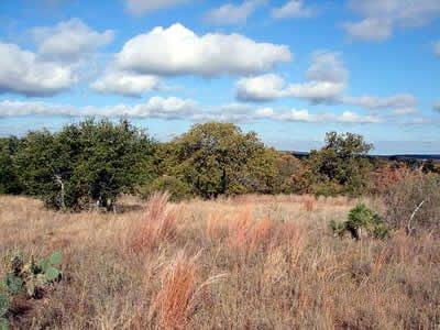 2732: GOV: TX LAND, DELL VALLEY, OFF HWY 62-SCENIC-CITY