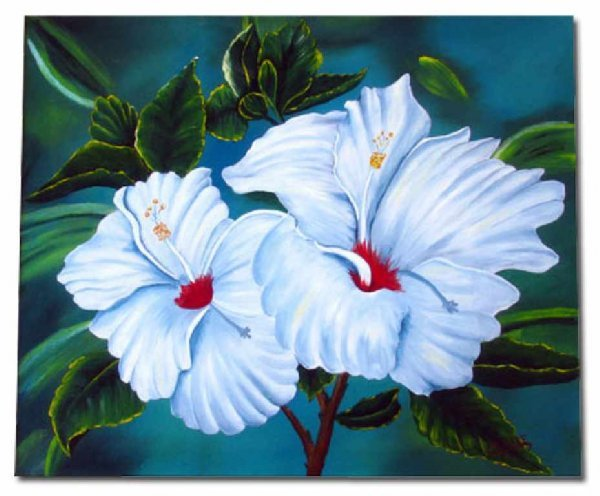 1440: White Tropical Hibiscus, Stretched Canvas Giclee