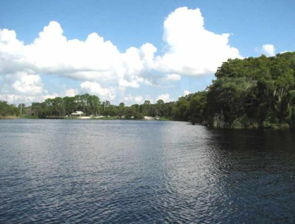 2724: GOV: FL LAND, CLOSE TO RIVER INVEST!! PUTNAM COUN