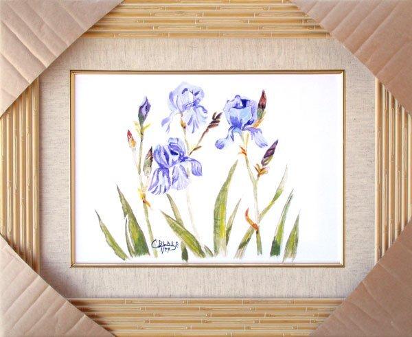 2728: Springs Blue Iris, Framed Print