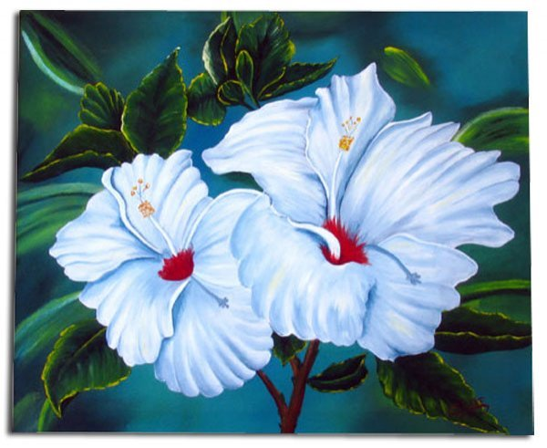 37: White Tropical Hibiscus, Stretched Canvas Giclée Pr