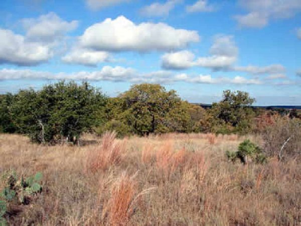 25: GOV: TX LAND, DELL VALLEY-OFF HWY 62-SCENIC-CITY LO