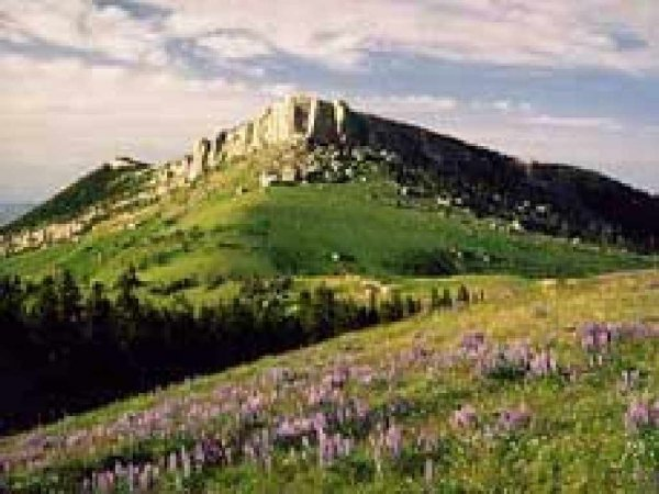 3: GOV: WY LAND, 40 AC., SWEETWATER-HUNTING-CAMPING, B&