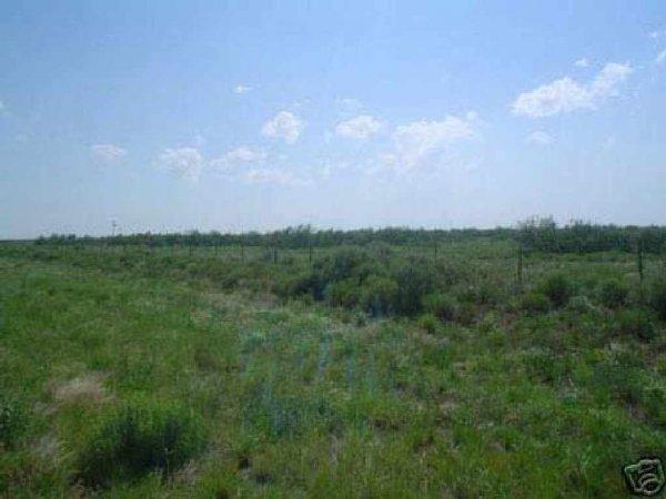 15: GOV: TX LAND, 12.29 AC., WARD COUNTY - OLD WEST, B&