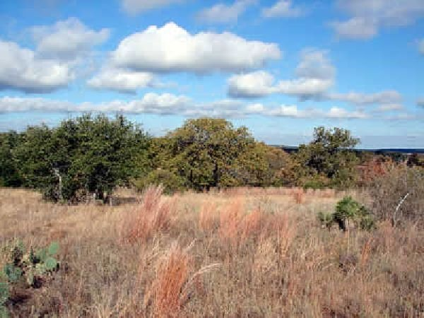 GOV: TX LAND, DELL VALLEY - OFF HWY 62 - CITY LOTS