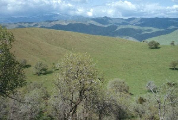 GOV: CA LAND, 5 AC. KERN COUNTY - B&A $229/mo