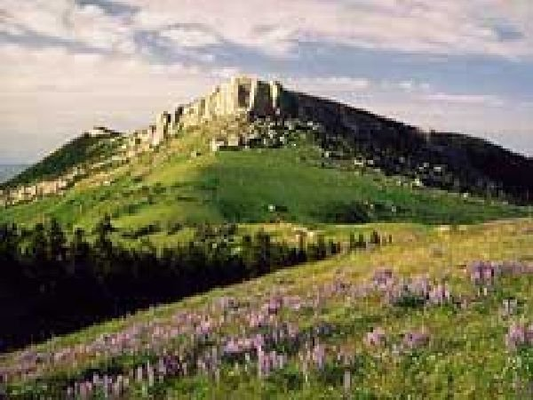 GOV: WY LAND, 40 AC. SWEETWATER - HUNTING - CAMPING