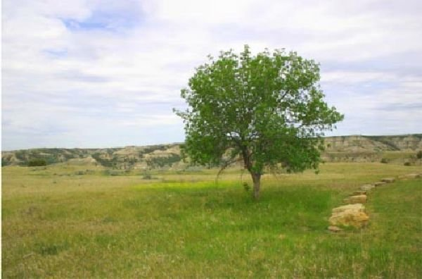 GOV: ND LAND, QUIET SCENIC BEAUTIFUL SARGENT COUNTY