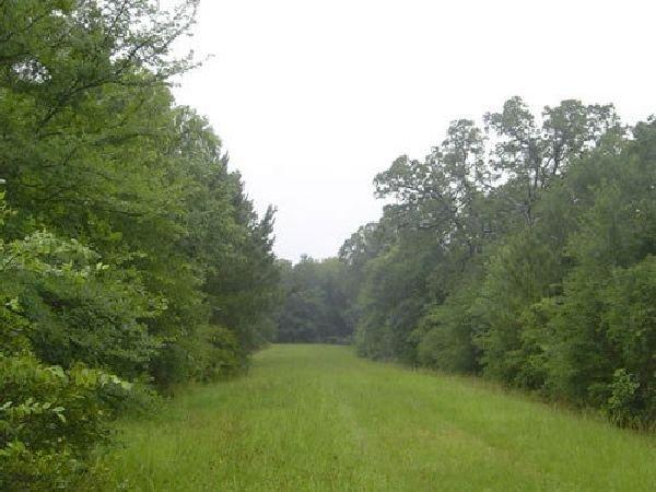 Texas Land, Waller County - B&A $139/mo
