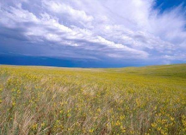 GOV: South Dakota Land, Tripp County Straight Sale