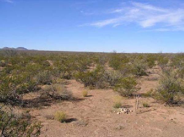 GOV: Texas Land, 10 AC. Hudspeth County Straight Sale