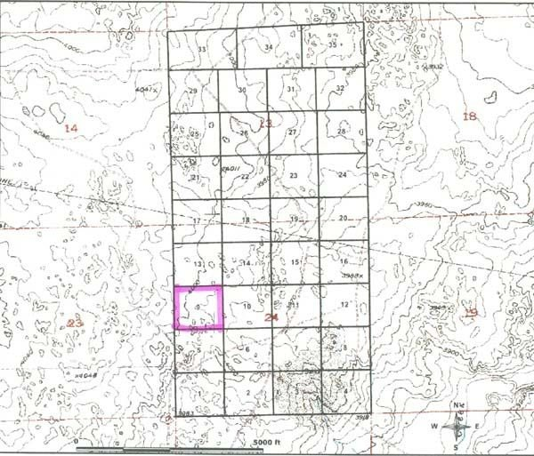 GOV: CO LAND, 35 AC. $19,751@$229/mo - BENT COUNTY! - 3
