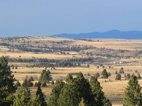 GOV: OR LAND, 20 AC. $18,900@$199/mo - HARNEY COUNTY!