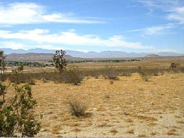 GOV: CA LAND, $19,900@$199/mo - LOS ANGELES COUNTY!