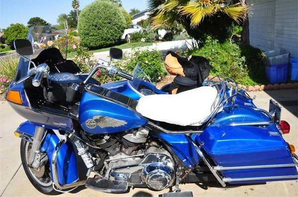 Harley Davidson 1982 FLT Tour Glide with Side Car