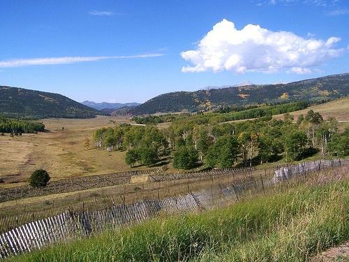 GOV: CO LAND, 5 AC. RANCH-MOUNTAIN-HUNT/FISH, STR SALE