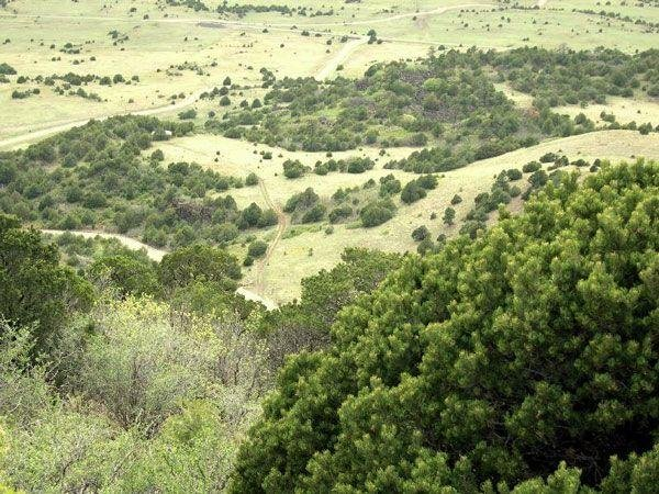 GOV: NM LAND, 10 AC. LUNA COUNTY ACREAGE STRAIGHT SALE! - 3