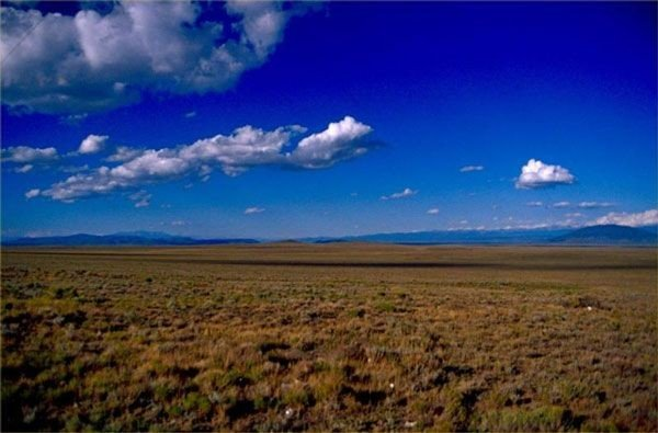 GOV: NM LAND, 10 AC. LUNA COUNTY ACREAGE STRAIGHT SALE! - 4