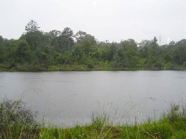 8: GOV: TX LAND, DEERWOOD LAKES STRAIGHT SALE INVESTMEN - 3