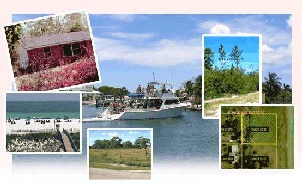 40: GOV: FL LAND, 1.25 AC. DISNEY & BEACH - STRAIGHT SA