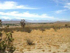 GOV: CA LAND, 5 AC., $18,481@$184/mo
