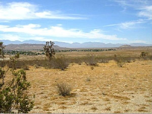 GOV: CA LAND, 5 AC., $18,481@$184/mo
