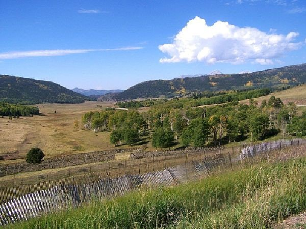 GOV: CO LAND, 5 AC., $12,914@$149/mo RANCHETTE-MOUNTAIN