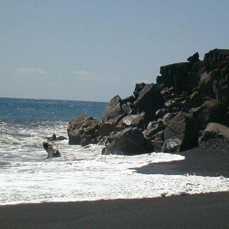 GOV: HI LAND, $24,741@$259/mo BIG ISLAND PARADISE!