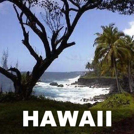 GOV: HI LAND, $22,414@$279/mo BIG ISLAND PARADISE!