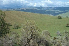 GOV: CA LAND, 7.12 AC. $29,749@$299/mo KERN COUNTY!