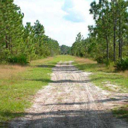 GOV: FL LAND, 1.25 AC OFF ROAD HEAVEN! - STRAIGHT SALE!
