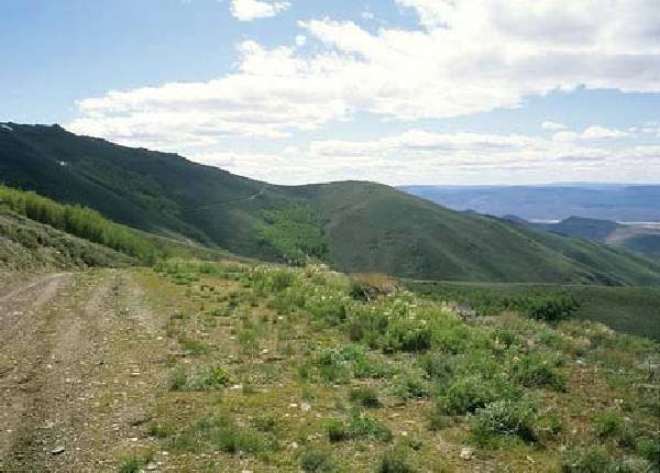 GOV: NV LAND, 40.4 AC. $19,791@$227/mo HUMBOLDT COUNTY!