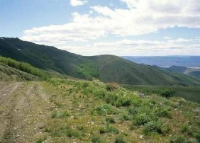 GOV: NV LAND, 51.33 AC. $29,999@$299/mo LARGE ACREAGE!
