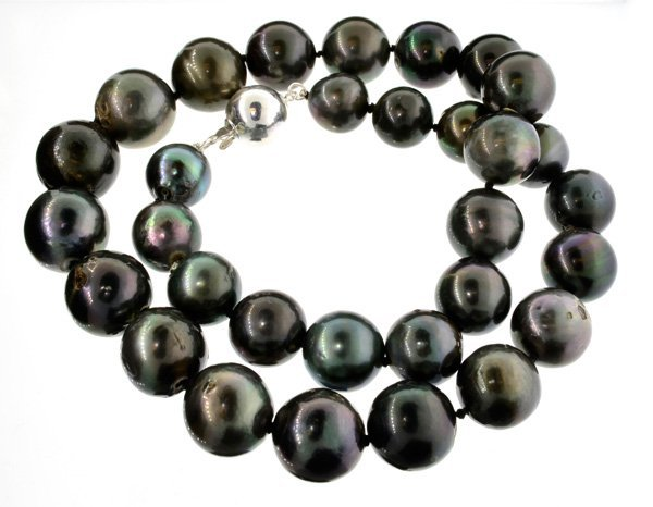APP: 21k 15.37-11.72mm Tahitian Cultured Pearl Necklace