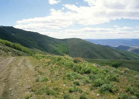 GOV: NV LAND, 640 AC. $129,441@$1,297/mo HUGE ACREAGE!