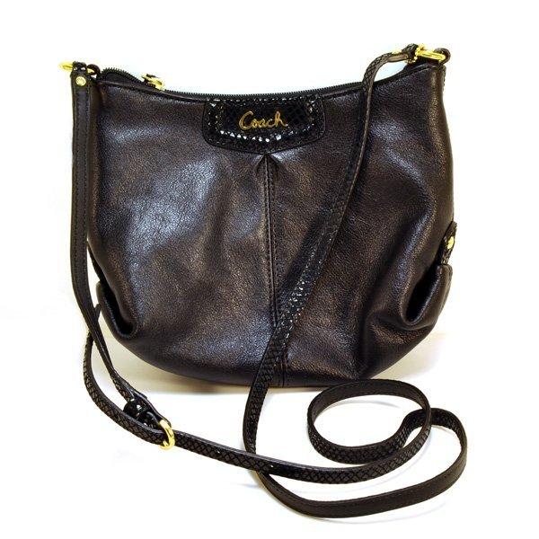 Coach Ashley Leather Swingpack Bag