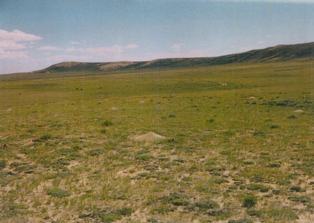 539: STR. SALE 40 AC-WYOMING RANCH~LOW RESERVE