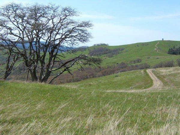 17: NORTHERN CALIFORNIA LAND~1.01 AC~legal access