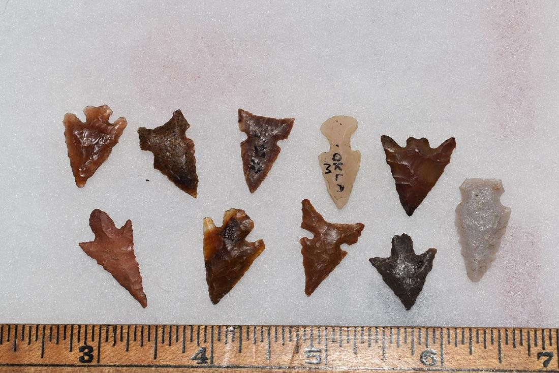 10 Western Gem Grade Bird Points, Some Columbia River,
