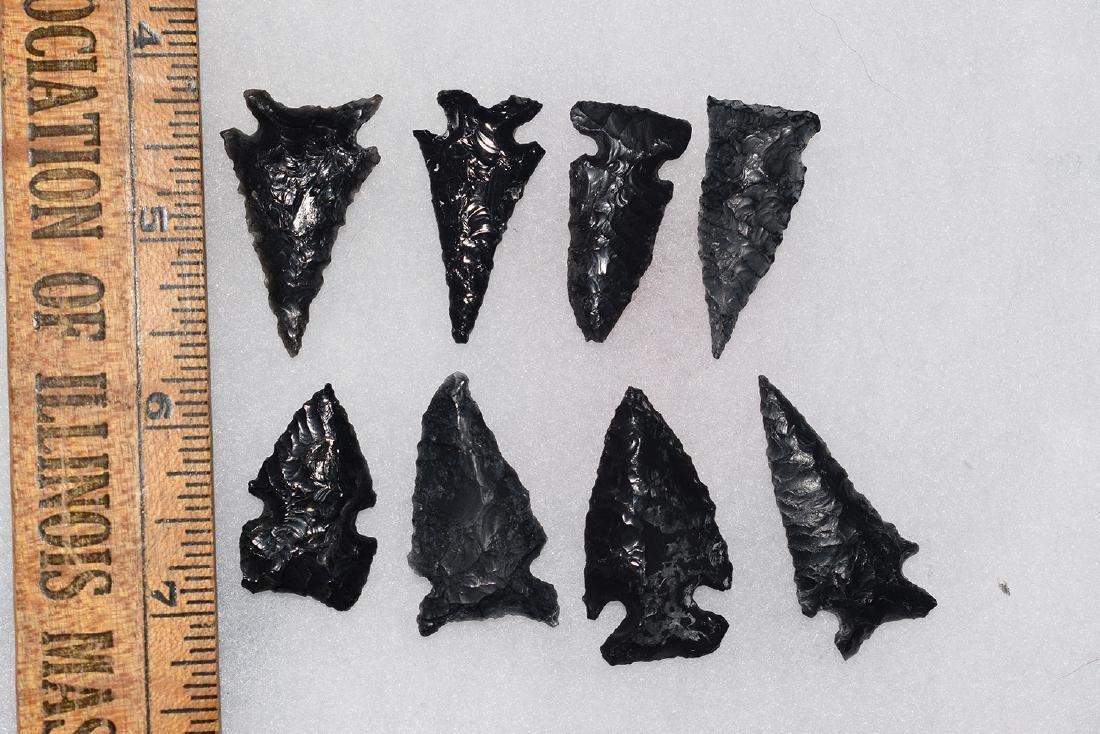 8 California Obsidian Arrowheads