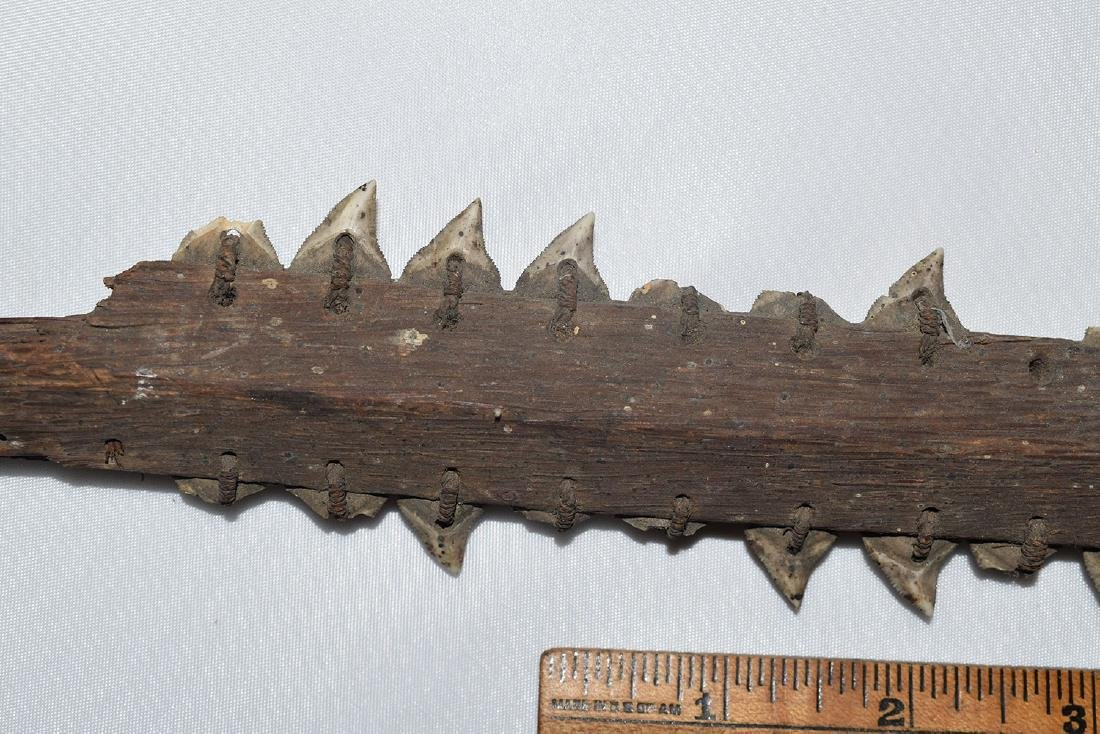 "24"" section of an Shark Tooth Sword, Aferica - 2"