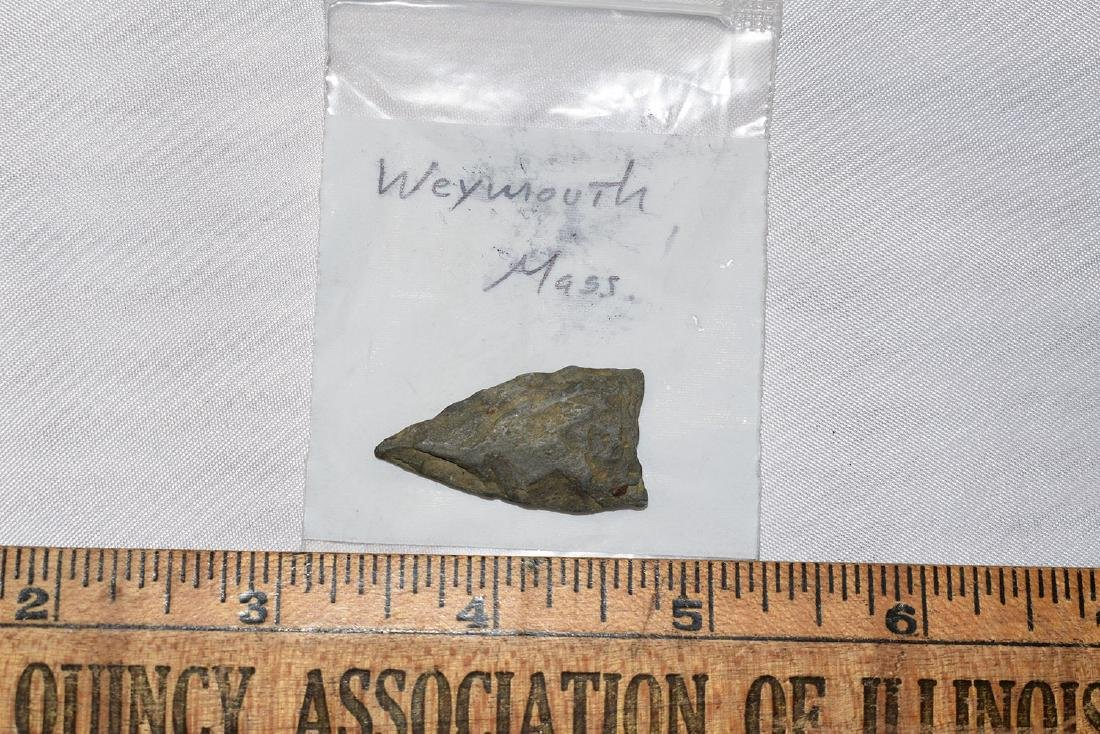 Paleo point, Weymouth Massachusetts