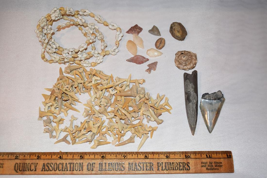 Lot containing shark teeth, modern shell necklace,