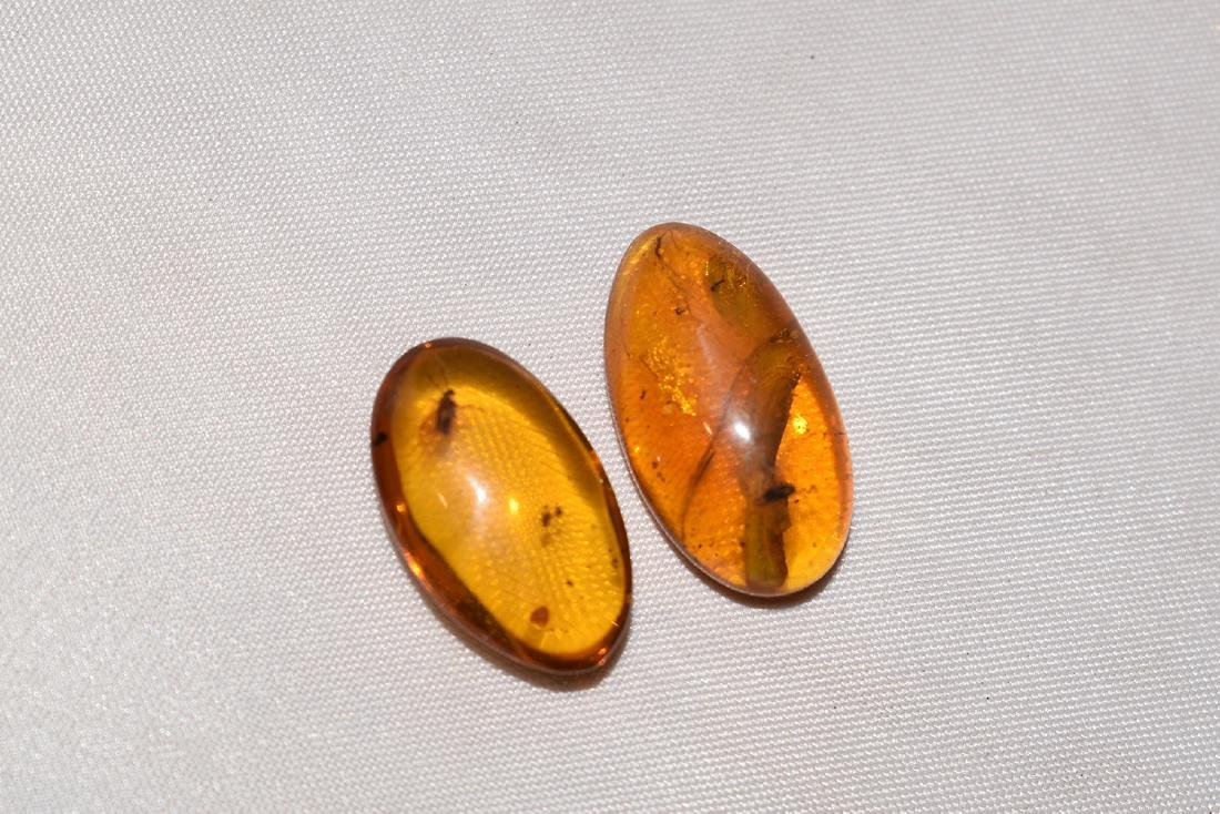 2 Natural Amber Nugget with Insect Inclusion 0.9
