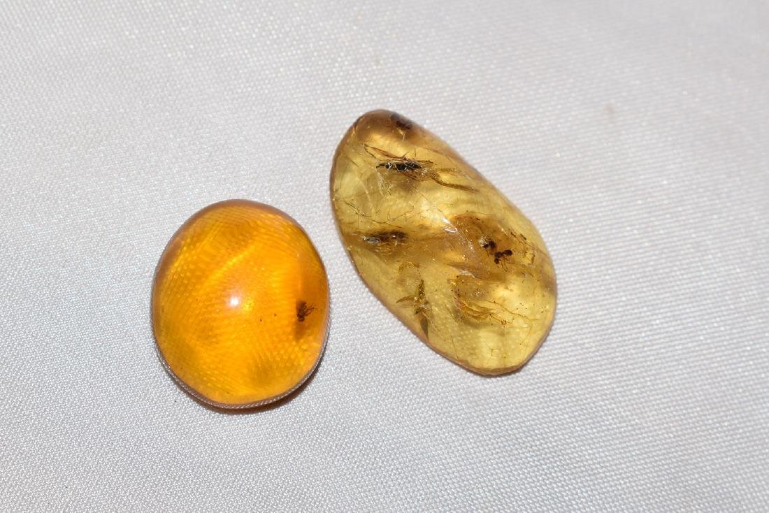 2 Natural Amber Nugget with Insect Inclusion 1.0