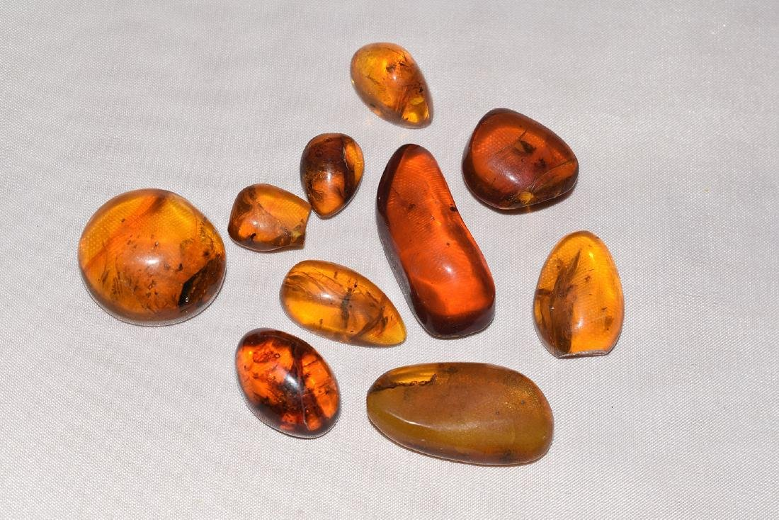 10 Natural Amber Nugget with possible Insect Inclusions