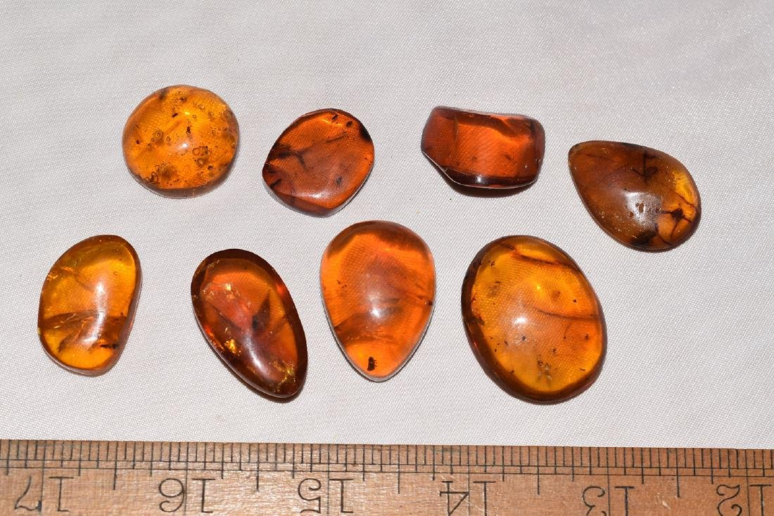 8 Natural Amber Nuggets with possible Insect Inclusions